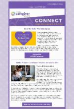 November 2020 newsletter English